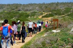 Let's go hiking with Cyprus Strollers